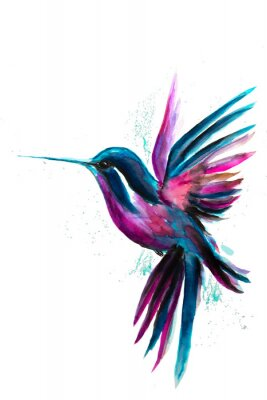 Adesivo Watercolor Hummingbird flying and isolated on white background. Rainbow bird. Tropical colibri watercolor illustration.
