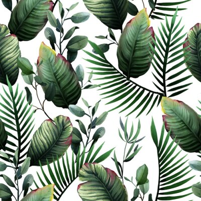 Adesivo Watercolor seamless pattern of tropical green leaves and palm on white