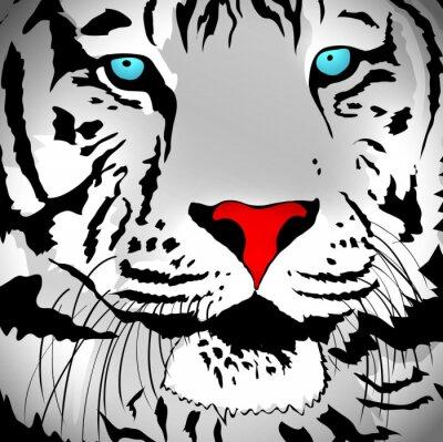 Adesivo White Tiger Portrait