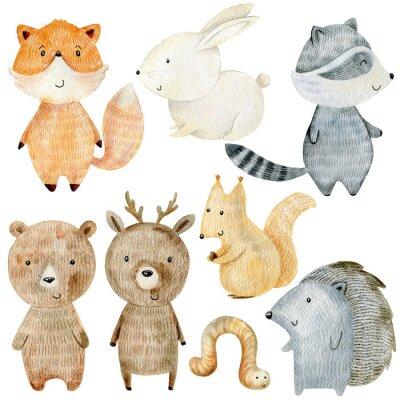Adesivo Woodland Animals Set