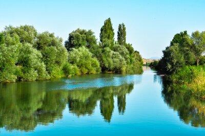 Adesivo Nehir suları ve ağaçların yansıması