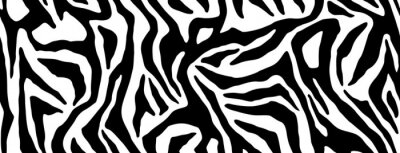 Adesivo Zebra fur repeating texture. Animal skin stripes, jungle wallpapers. Black and white seamless pattern. Vector