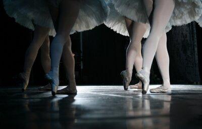 Fotomural A bailarina