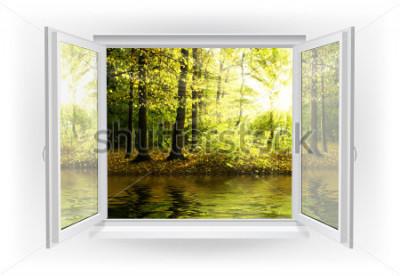 Fotomural Abra a janela com a floresta em um fundo
