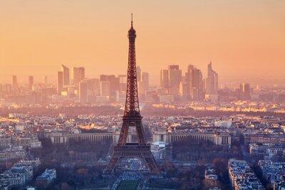 Fotomural Aerial view of Paris at sunset