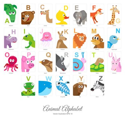 Fotomural Alfabeto animal liso