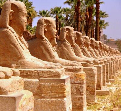 Fotomural Amun Templo de Luxor