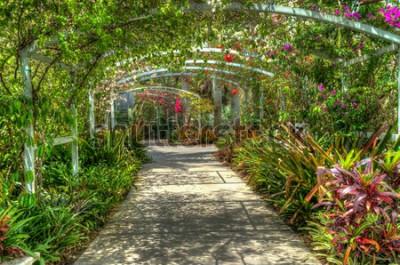 Fotomural Arco coberto com flores coloridas brilhantes no jardim botânico em Nápoles, FL