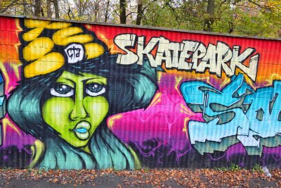 Fotomural Arte da parede de tijolo Graffiti na Alemanha