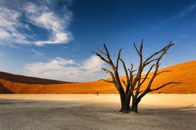 Fotomural Árvore inoperante em Sossusvlei, no deserto de Namib, Namíbia