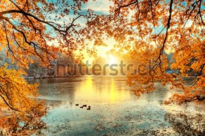 Fotomural Árvores coloridas bonitas com o lago no outono, fotografia de paisagem. Final do outono e início do inverno. Ao ar livre e natureza.