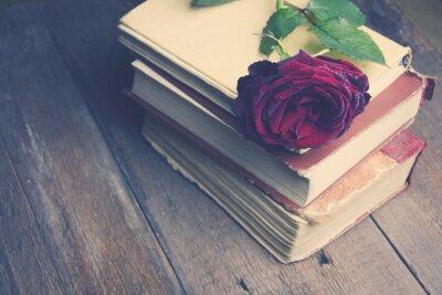 Fotomural Aumentou em livros