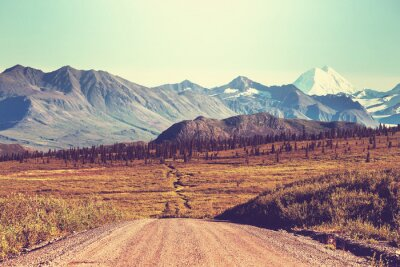 Fotomural Auto-estrada Denali
