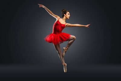 Fotomural Bailarina