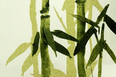 Fotomural Bamboo / textura