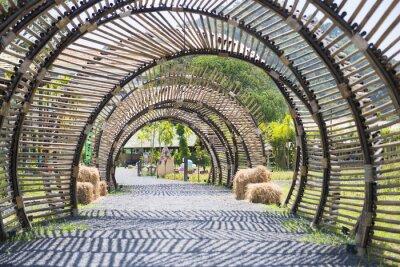 Fotomural Bambu, túnel, Estrutura, jardim