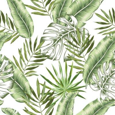 Fotomural Banana verde, folhas de palmeira do monstera com fundo branco. Padrão sem emenda de vetor. Ilustração de folhagem de floresta tropical. Vegetação de plantas exóticas. Verão praia design floral. Nature