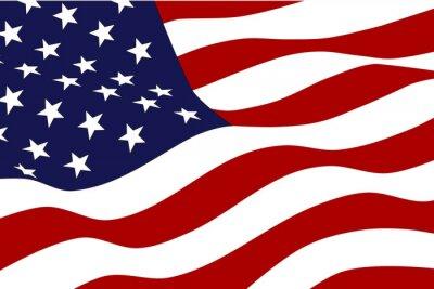 Fotomural Bandeira da América