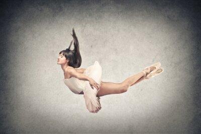 Fotomural bela dançarina