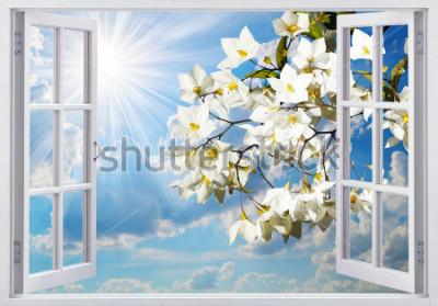 Fotomural Bela vista da janela