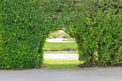 Fotomural belo jardim