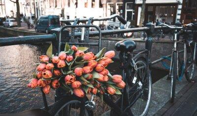 Fotomural Bicicleta com tulipas