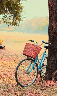 Fotomural Bicicleta para viagens de lazer. (Foco na cesta) tom retro do vintage