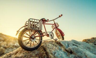 Fotomural Bicicleta retro do brinquedo pelo mar