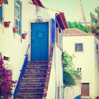 Fotomural Blue Door
