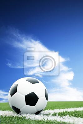 719452528e Bola de futebol no campo de futebol fotomural • fotomurais passo ...