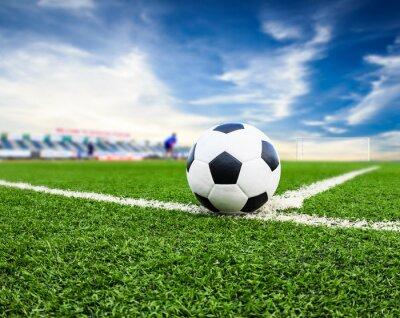 c01bdf9564 Bola de futebol no campo de grama verde fotomural • fotomurais rede ...