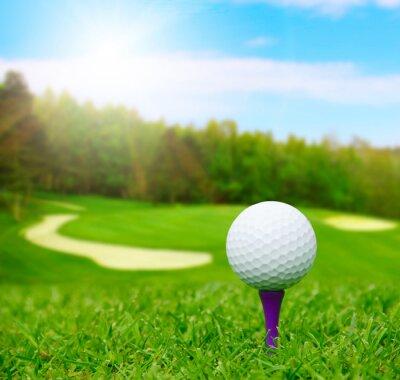 Fotomural Bola de golfe em curso