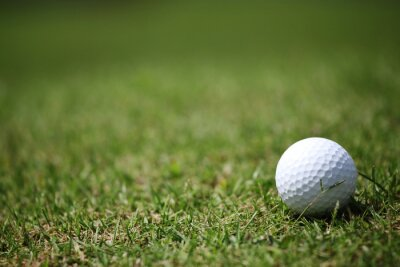 Fotomural bola de golfe na grama