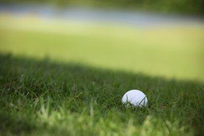 Fotomural Bola de golfe no curso