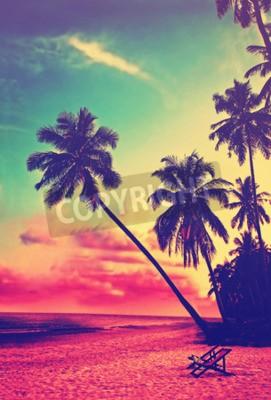 Fotomural Bonito, tropicais, praia, silhuetas, palma, árvores, pôr do sol