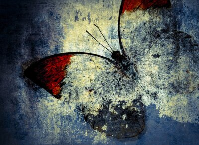 Fotomural borboleta