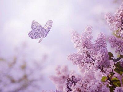 Fotomural Borboleta e flores