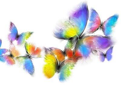 Fotomural borboletas