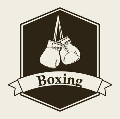 Fotomural boxe emblema