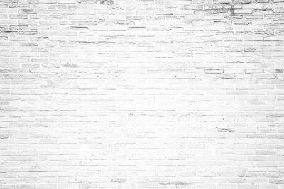 Fotomural Branco grunge parede de tijolos textura de fundo