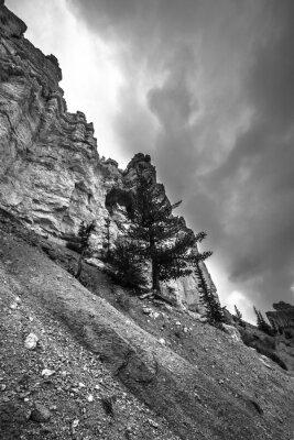Fotomural Bryce Canyon Fotografia em preto e branco