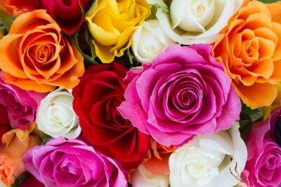 Fotomural buquê de rosas frescas