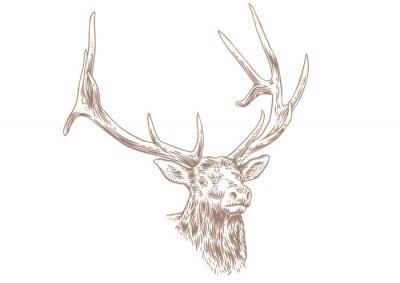 Fotomural Cabeça de cervo