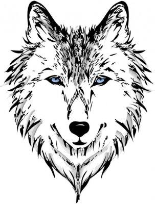 Fotomural Cabeça de lobo
