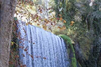 Fotomural Cachoeira no outono cheio de folhas