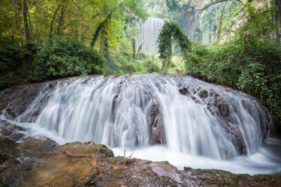 Fotomural Cachoeira no Parque Natural