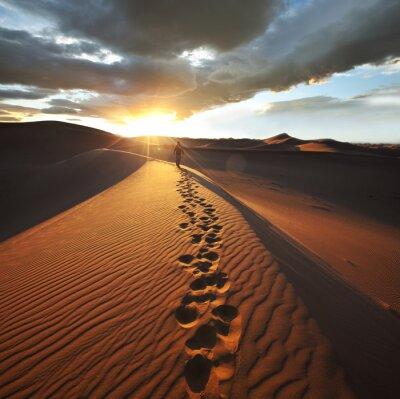 Fotomural Caminhada no deserto