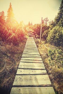 Fotomural Caminho de madeira da montanha estilizado retro nas montanhas no por do sol.