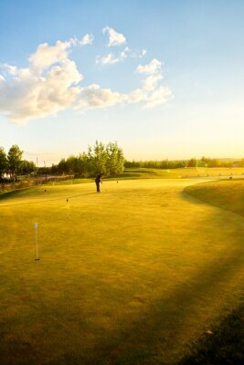 Fotomural Campos de golfe