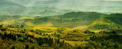 Fotomural Campos na Toscana